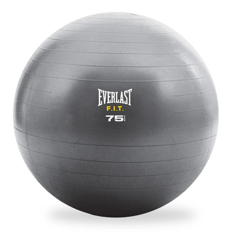 Stability Ball Manual: Helping People Experience Success